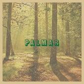 Palmar (En Directo Desde El Desierto) by Caloncho