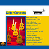 Guitar Concerto by Various Artists
