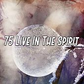 75 Live In the Spirit by Study Concentration