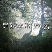 54 Sounds for Therapy by Yoga Music