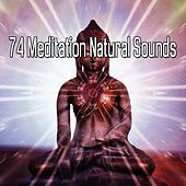74 Meditation Natural Sounds de Nature Sounds Artists