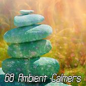 68 Ambient Calmers by Classical Study Music (1)