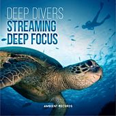 Streaming by Deep Divers