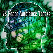 78 Peace Ambience Tracks von Entspannungsmusik