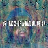 56 Tracks of a Natural Origin von Massage Therapy Music