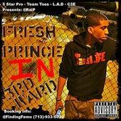 Fresh Prince of 3rd Ward by Rai P