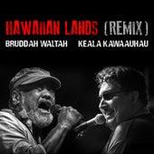 Hawaiian Lands (Remix) by Bruddah Waltah