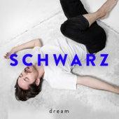 Dream by Schwarz