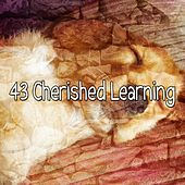 43 Cherished Learning by Lullaby Land