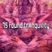 75 Found Tranquility de S.P.A