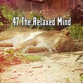 47 The Relaxed Mind by Various Artists
