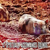 47 Spritually Accompanied Sounds de S.P.A