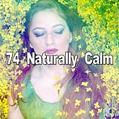 74 Naturally Calm by Spa Relaxation