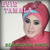 Senandung Rindu de Evie Tamala