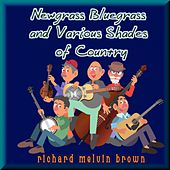 Newgrass Bluegrass and Various Shades of Country by Various Artists