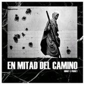En Mitad del Camino by Honky