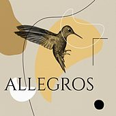 Allegros by Various Artists
