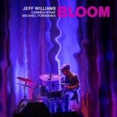Bloom de Jeff Williams