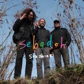 Sunshine by Sebadoh