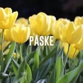 Påskehygge - Hyggeligste sange til påskefrokosten og middagshygge - Afslappende musik til påskeferien by Various Artists