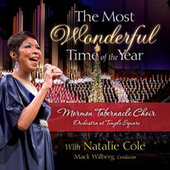 The Most Wonderful Time of the Year de Various Artists