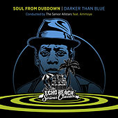 Soul from Dubdown - Darker Than Blue von The Senior Allstars