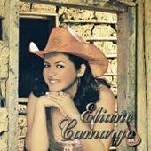 Eliane Camargo, Vol. 7 by Eliane Camargo