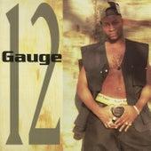 12 Gauge by 12 Gauge