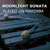 Moonlight Sonata (played on Marimba) by Moonlight Sonata