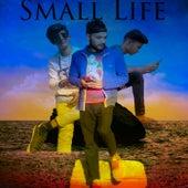 Small Life by Honey Roy