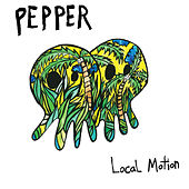 Local Motion de Pepper