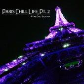 Paris Chill Life, Pt. 2 (A Fine Chill Selection) de Various