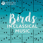 Birds in Classical Music de Various Artists