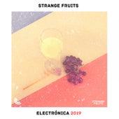Electrónica 2019 & Dance Music : La Mejor Música Electrónica, Lo Mas Nuevo Shuffle Dance, Chill Mix von Various Artists