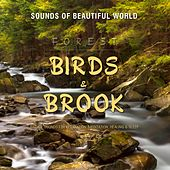 Forest: Birds & Brook (Nature Sounds for Relaxation, Meditation, Healing & Sleep) by Sounds of Beautiful World