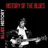 History of the Blues Medley 1: Frankie / Stack O' Lee Blues / Candy Man Blues / Jack O' Diamonds / Hangman's Blues / Low Down Mojo Blues / Midnight Special / Good Morning Blues / Easy Rider / Trucking Little Woman / Bull Cow Blues / Cross Road Blues / Swe by Various Artists