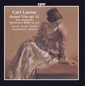 Loewe: Grand Trio, Op. 12, Schottische Bilder, Op. 112 & Duo espagnôla de Henning Lucius