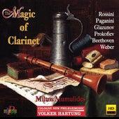 The Magic of Clarinet de Various Artists