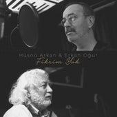 Fikrim Yok by Hüsnü Arkan