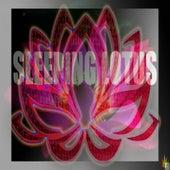 Sleeping Lotus von JU-JU