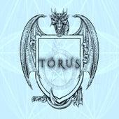 Tórus by Kripper