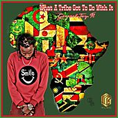 What A Tribe Got To Do With It de Various Artists