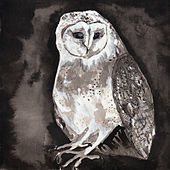 Owl Song von Cosmo Sheldrake