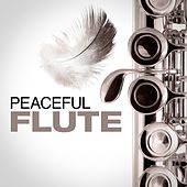 Peaceful Flute by Various Artists