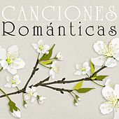 Canciones Románticas de Various Artists