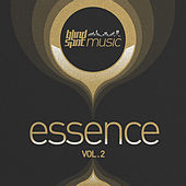 Blind Spot Essence, Vol. 2 by Various Artists