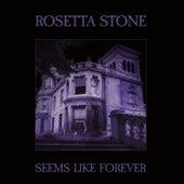 Seems Like Forever by Rosetta Stone