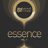 Blind Spot Essence, Vol. 1 by Various Artists
