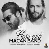 Hese Ajib by Macan Band