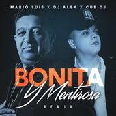 Bonita y Mentirosa (Remix) de Mario Luis